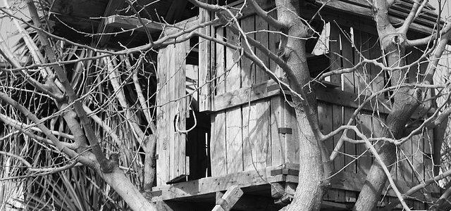 De boomhut: trek je terug in de natuur