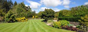 Weergave tuin